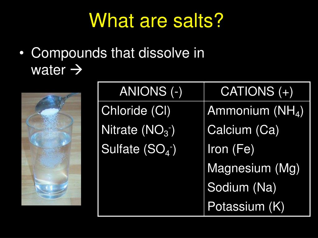 What are salts?