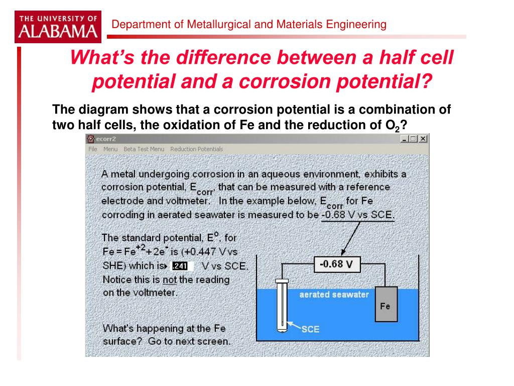 What's the difference between a half cell potential and a corrosion potential?