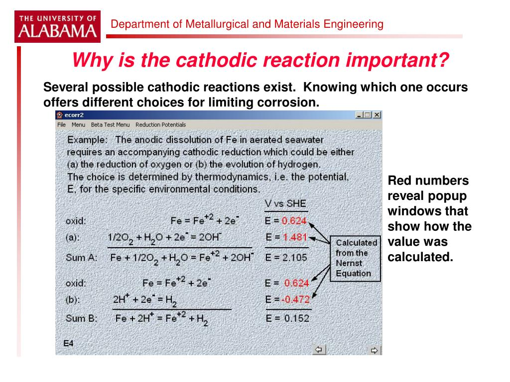Why is the cathodic reaction important?