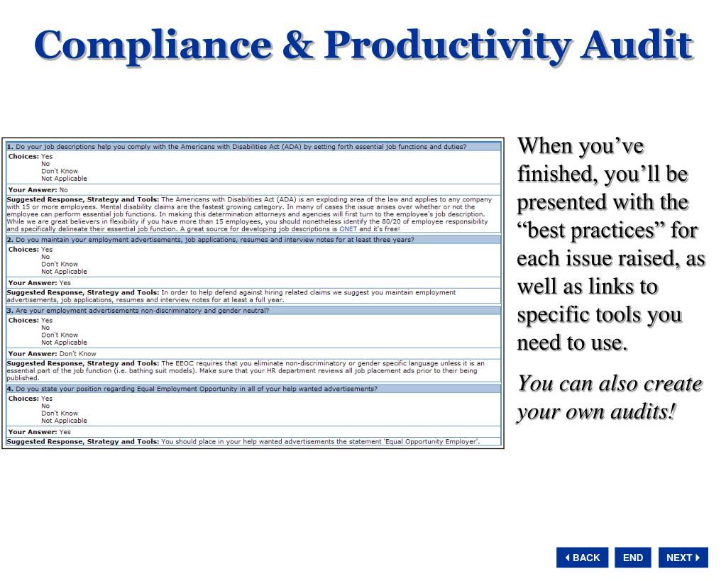 Compliance & Productivity Audit