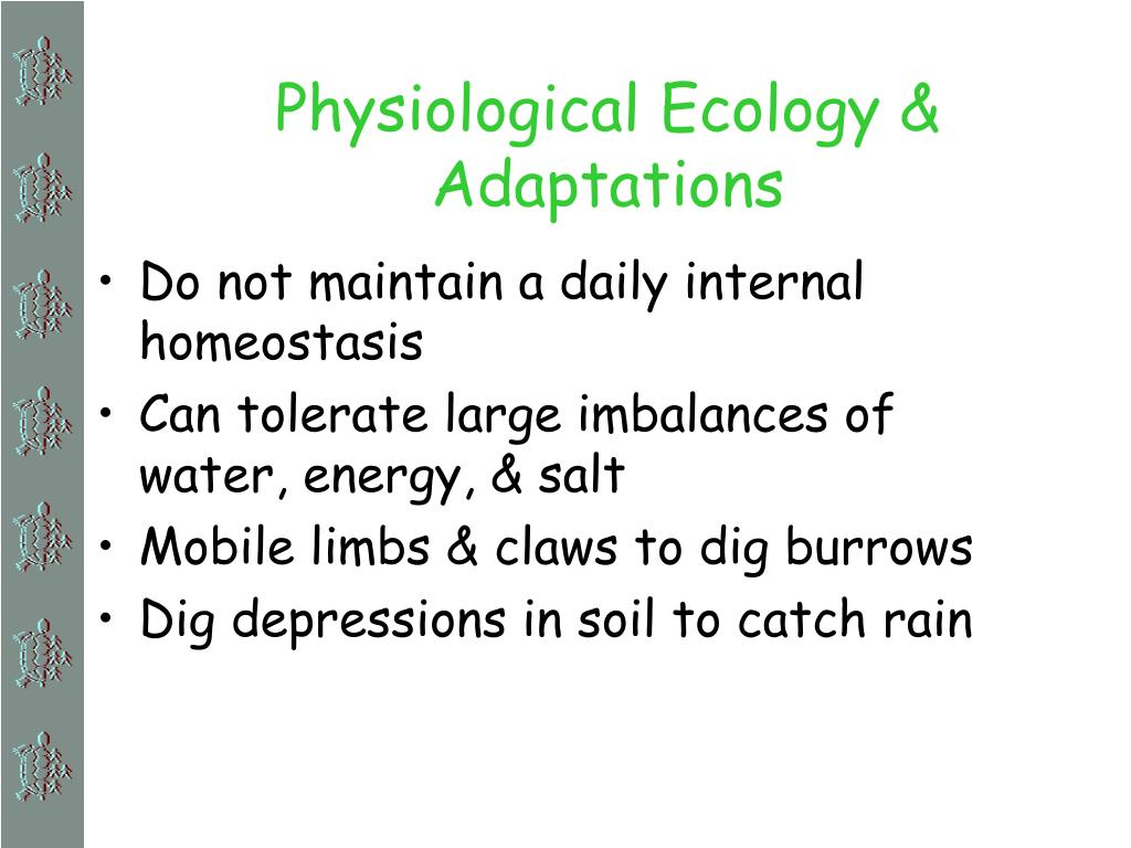 Physiological Ecology & Adaptations