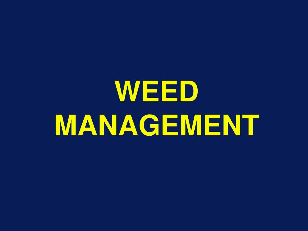 ppt - weed management powerpoint presentation