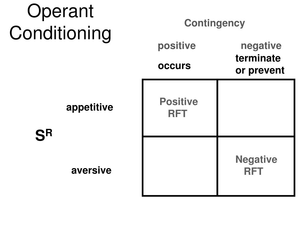 an examination of the two videos on operant conditioning and positive punishment View and download operant conditioning essays and operant conditioning (oc) are two crucial aspects positive and negative punishment, and positive and.