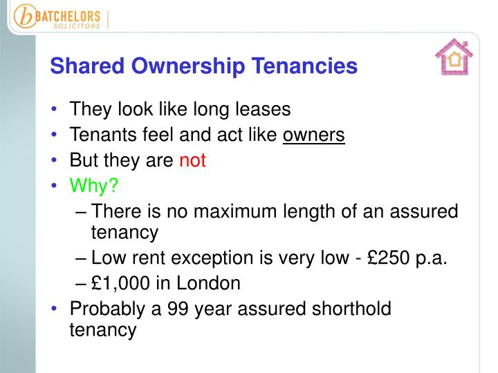 Shared Ownership Tenancies