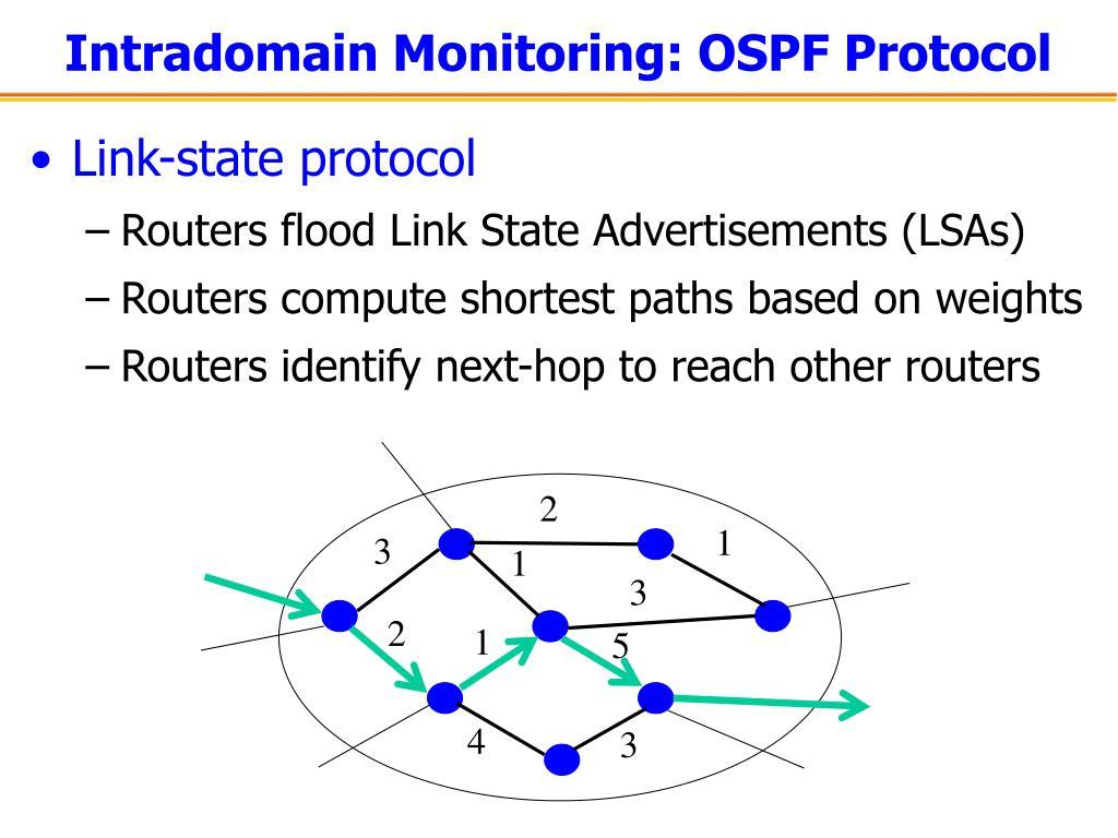 Intradomain Monitoring: OSPF Protocol