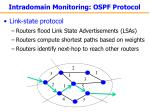 intradomain monitoring ospf protocol