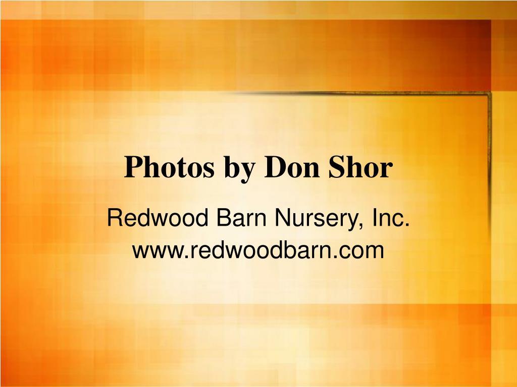 Photos by Don Shor