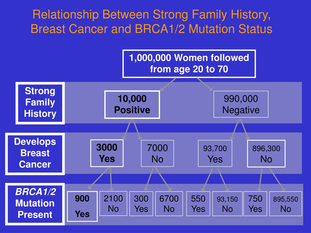 Relationship Between Strong Family History, Breast Cancer and BRCA1/2 Mutation Status