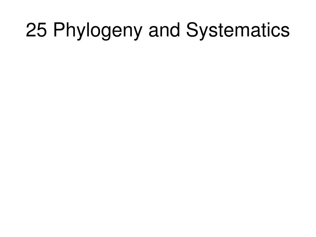 25 Phylogeny and Systematics