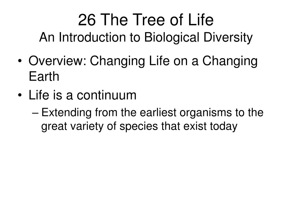 26 The Tree of Life