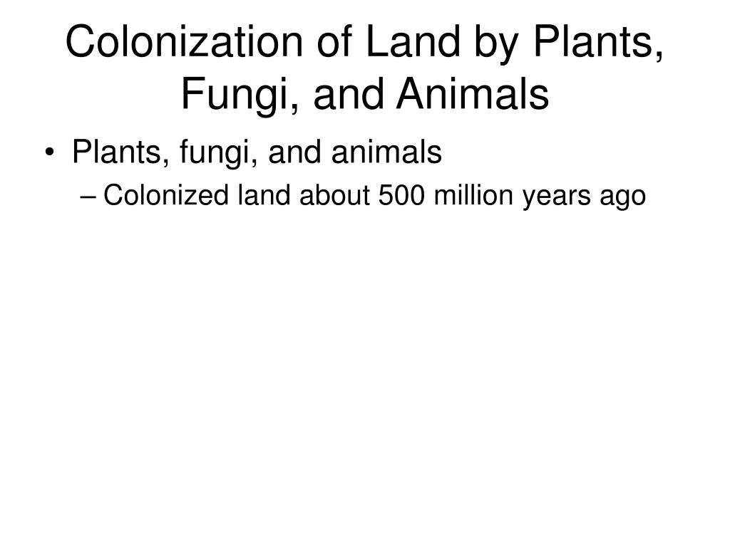 Colonization of Land by Plants, Fungi, and Animals