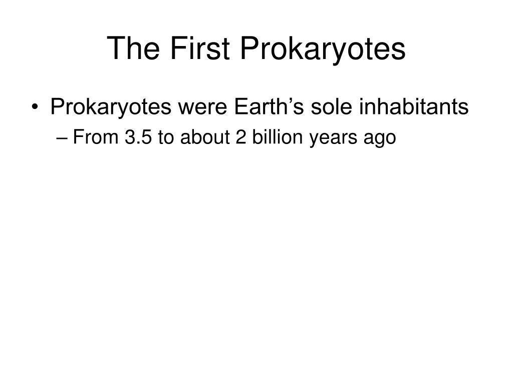 The First Prokaryotes