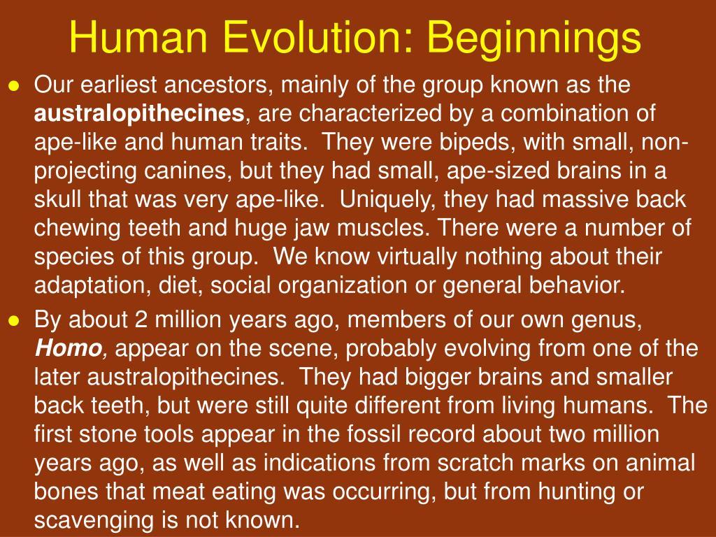 Human Evolution: Beginnings