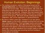 human evolution beginnings