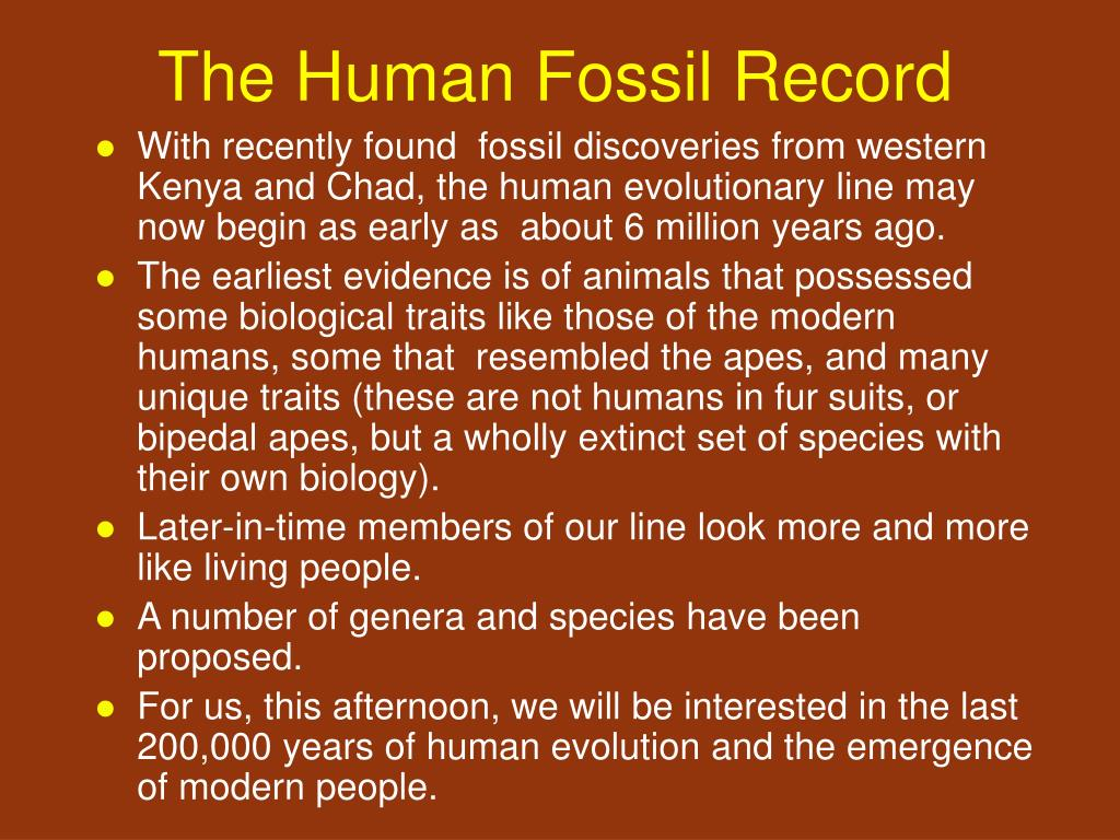The Human Fossil Record