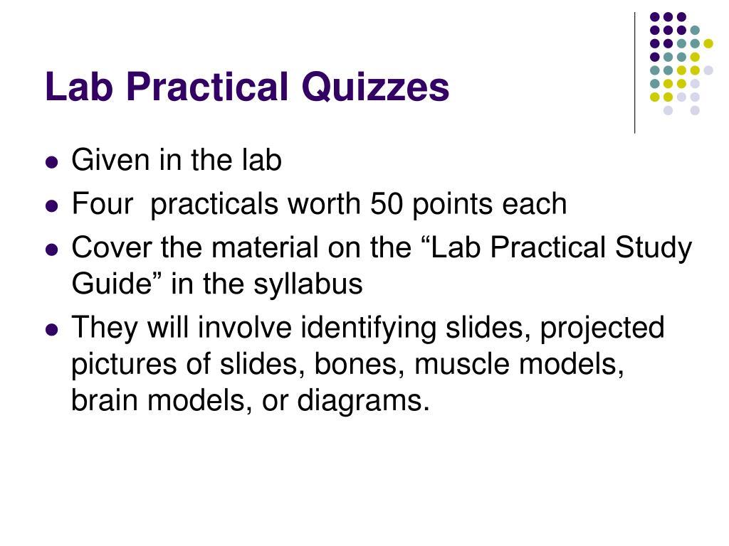 Lab Practical Quizzes