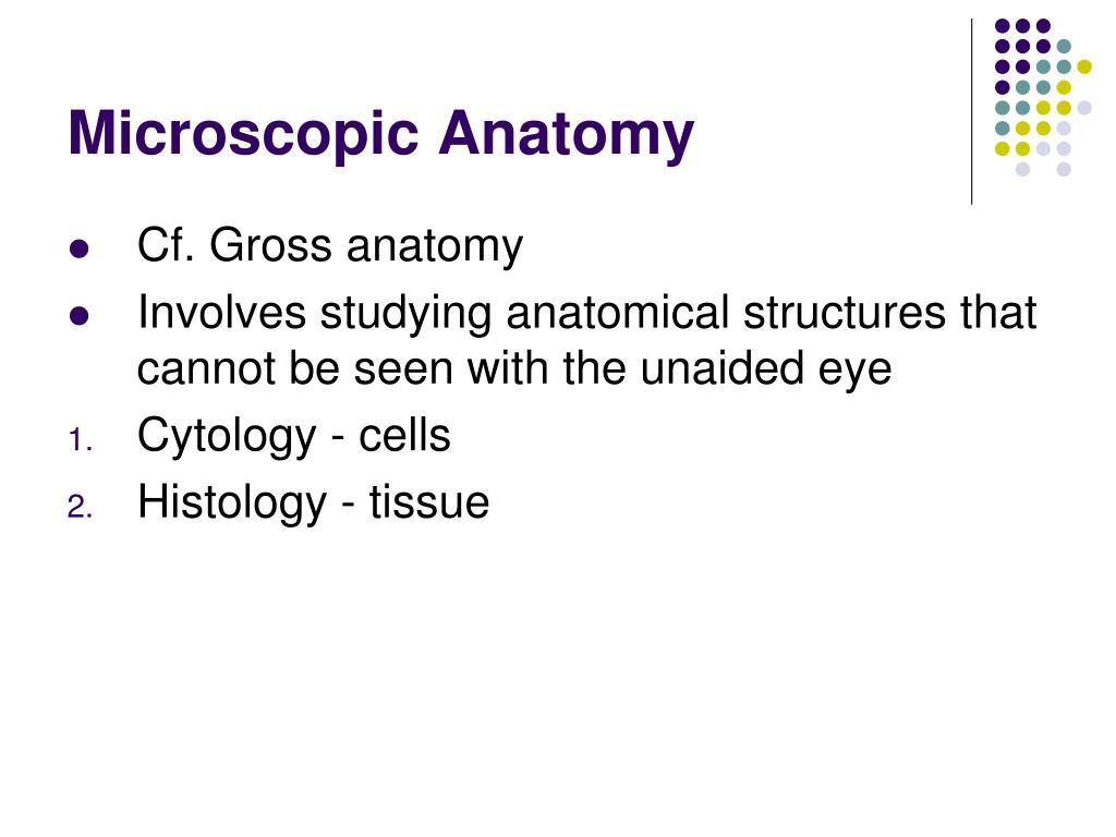 Microscopic Anatomy