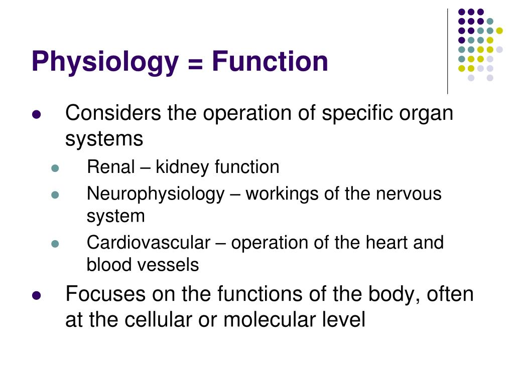 Physiology = Function