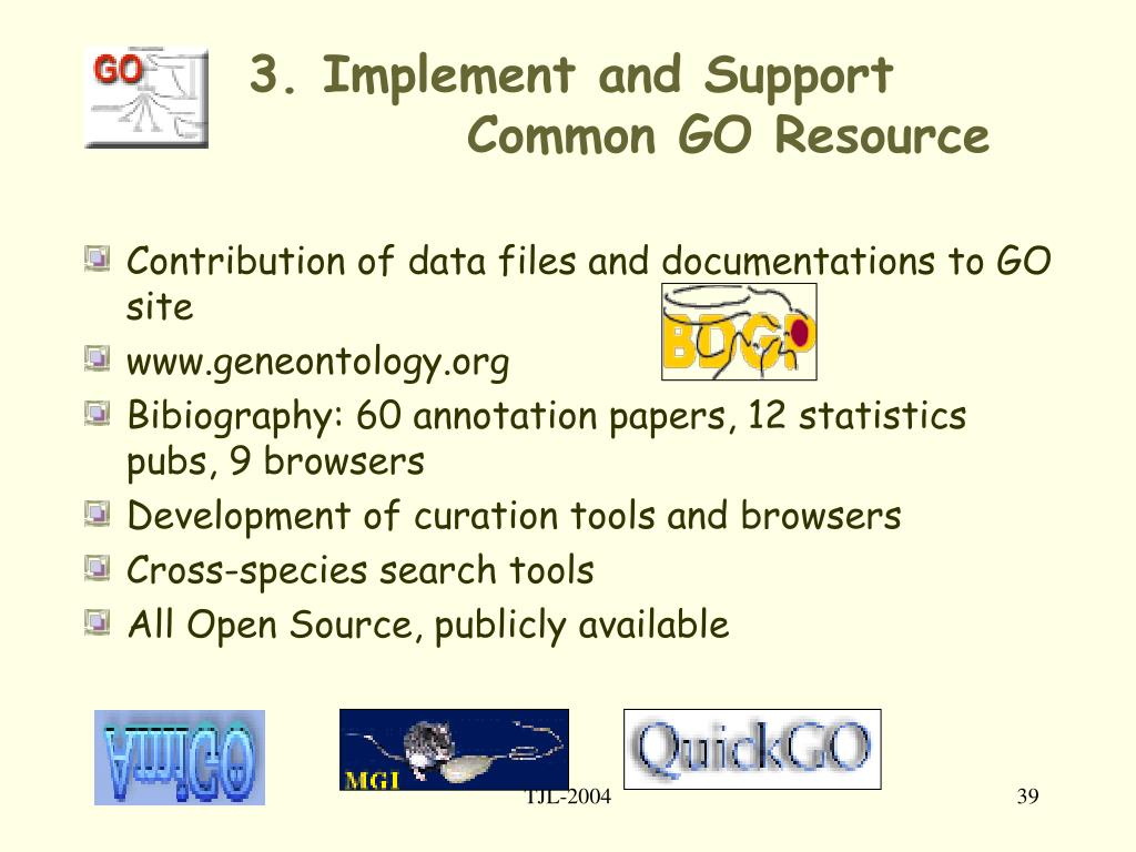 3. Implement and Support