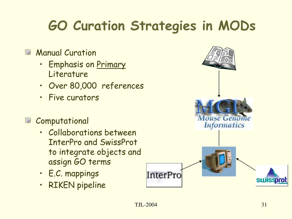 GO Curation Strategies in MODs