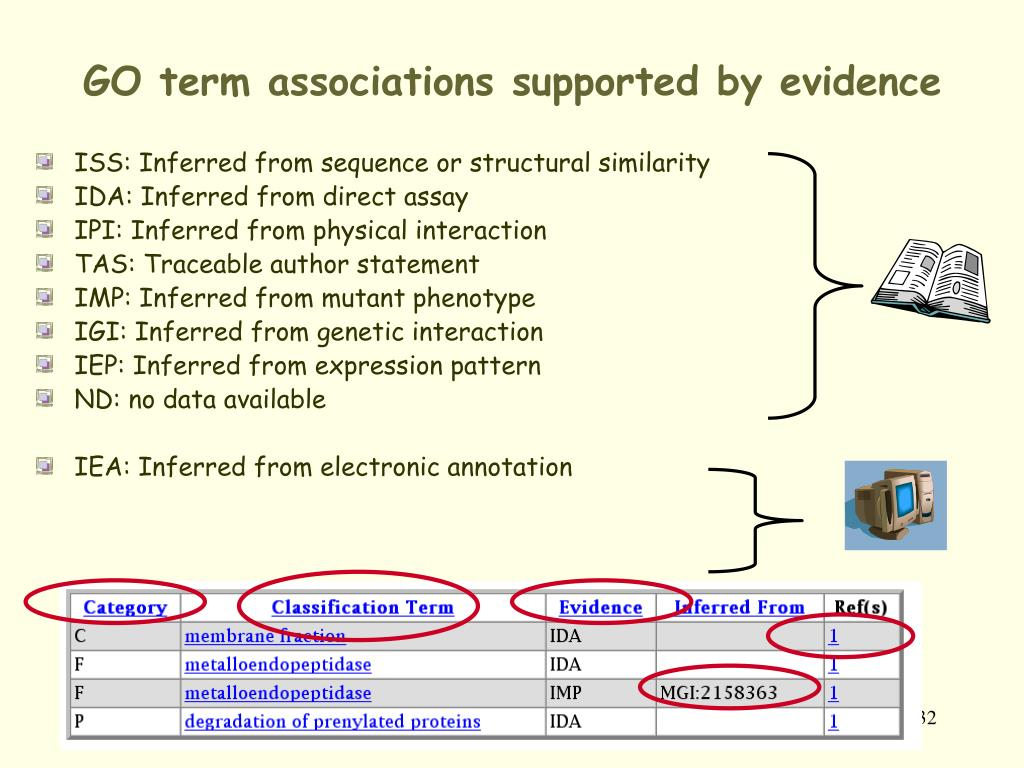 GO term associations supported by evidence