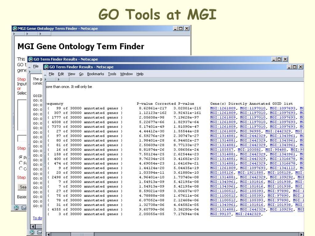 GO Tools at MGI