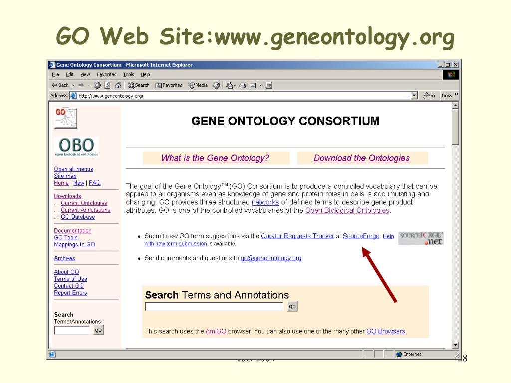 GO Web Site:www.geneontology.org