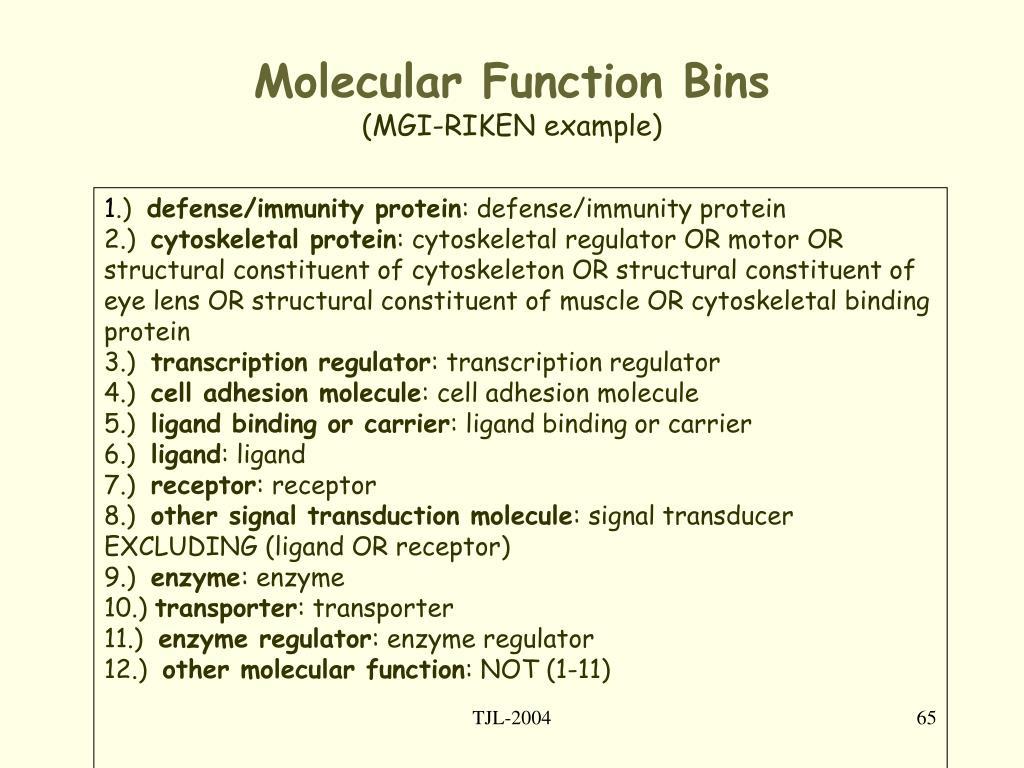 Molecular Function Bins