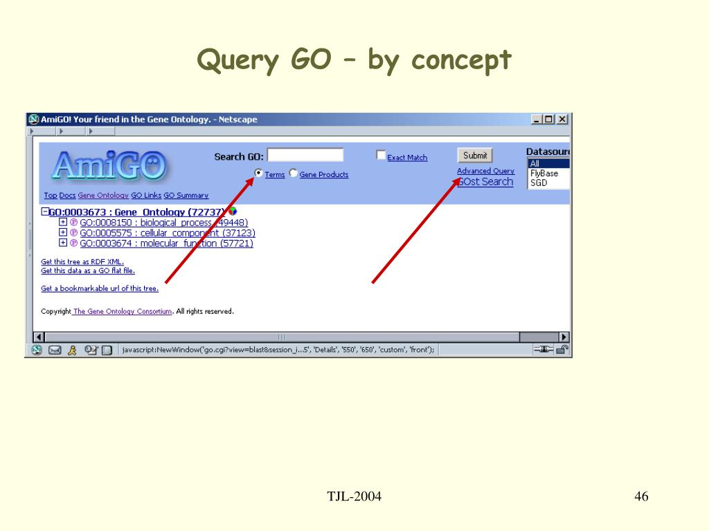 Query GO – by concept