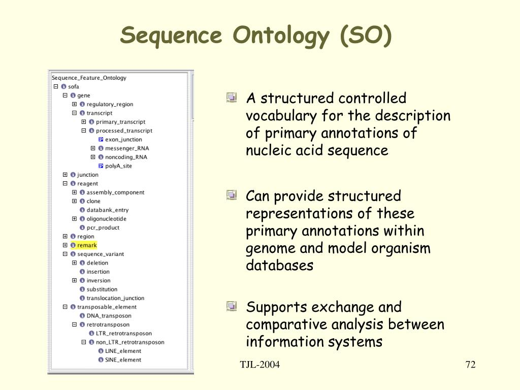Sequence Ontology (SO)