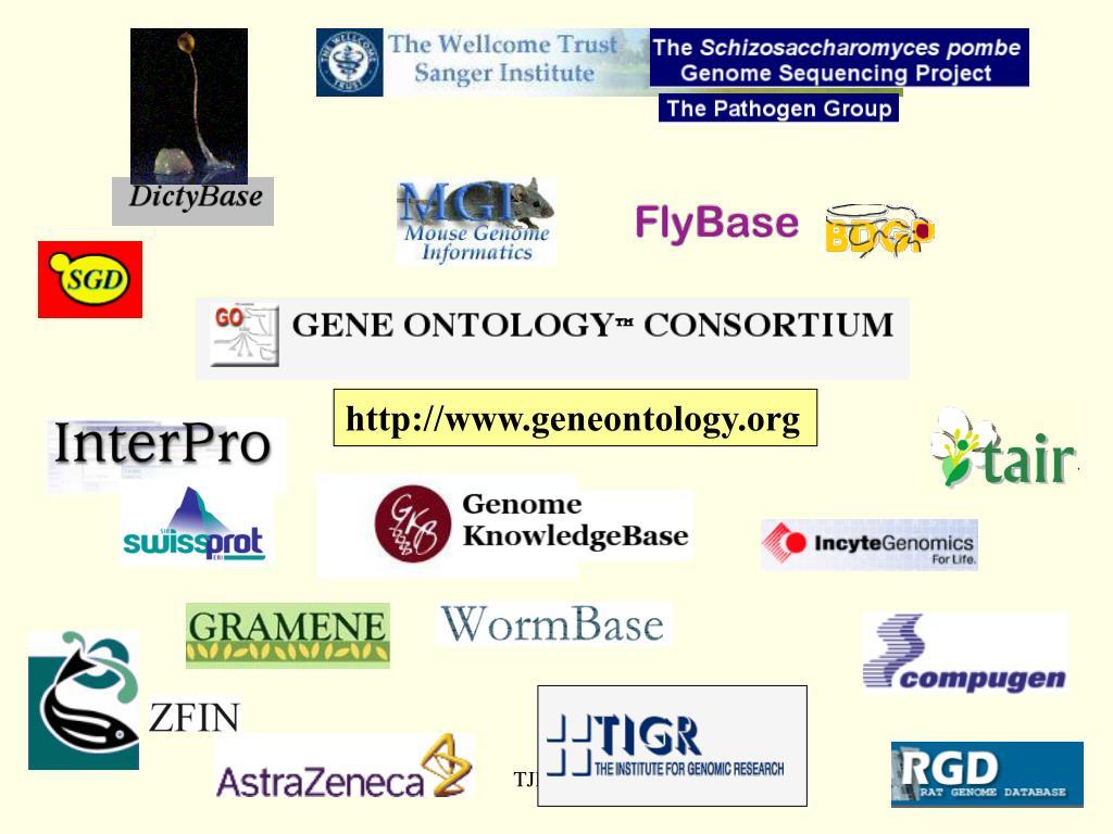 http://www.geneontology.org