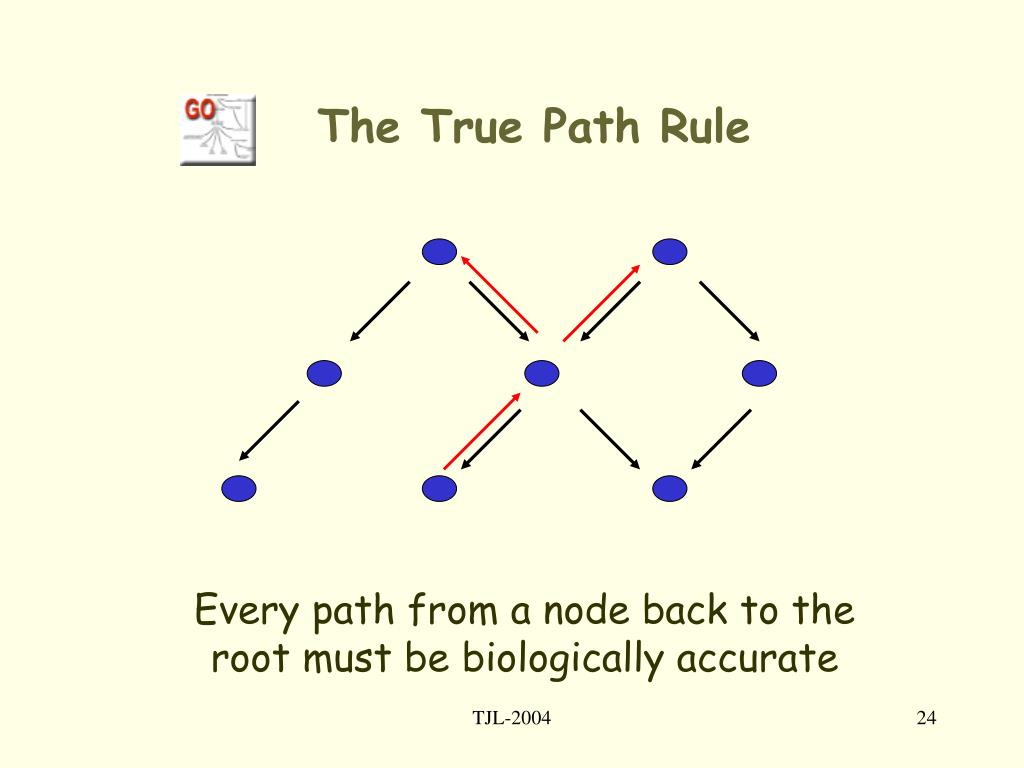 The True Path Rule