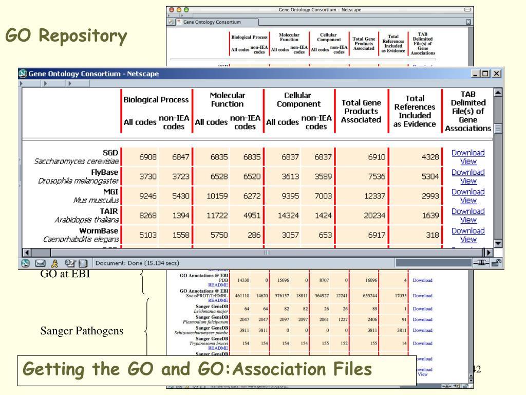 GO Repository