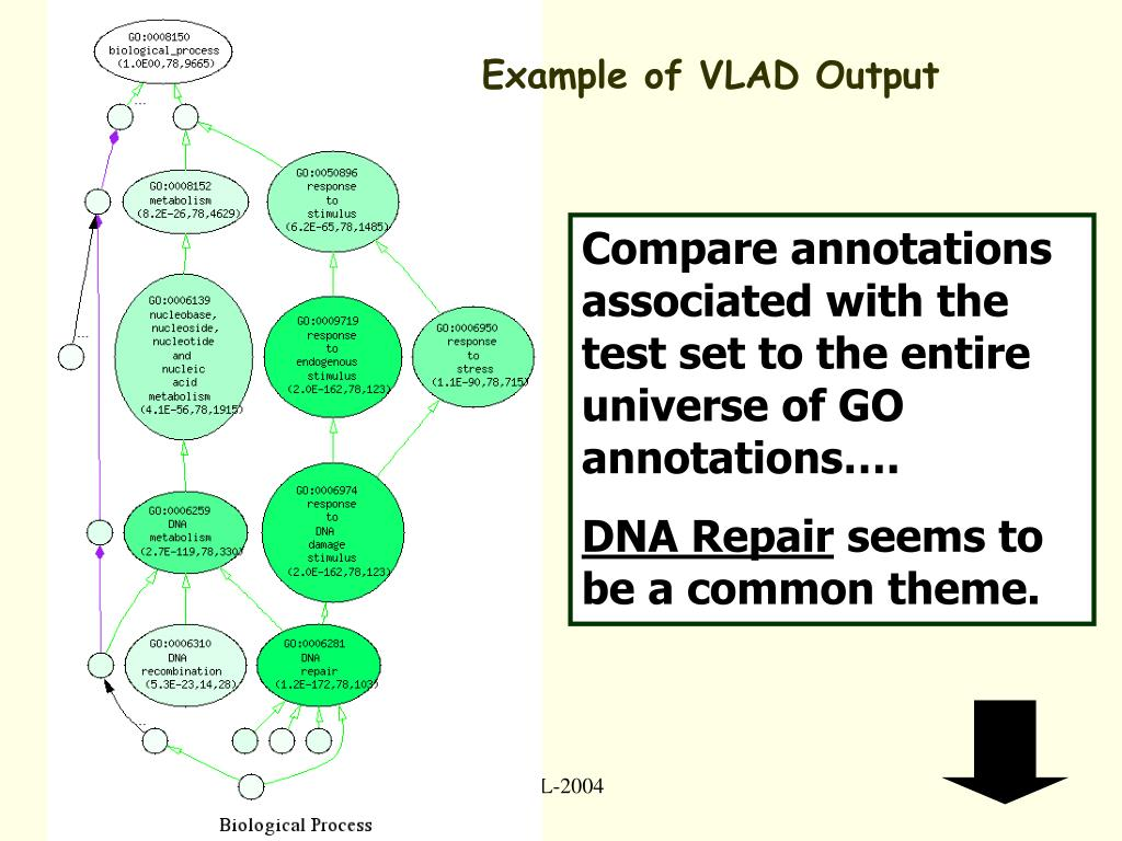Example of VLAD Output