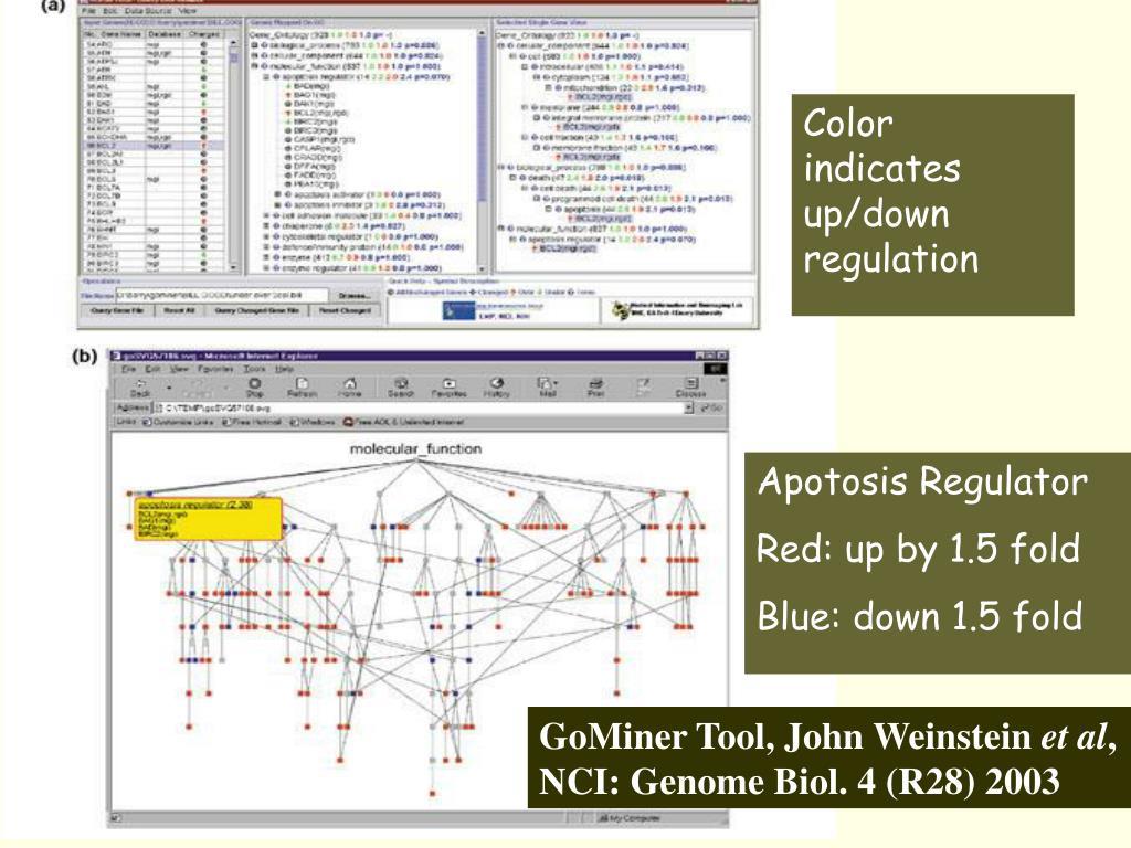 Color indicates up/down regulation