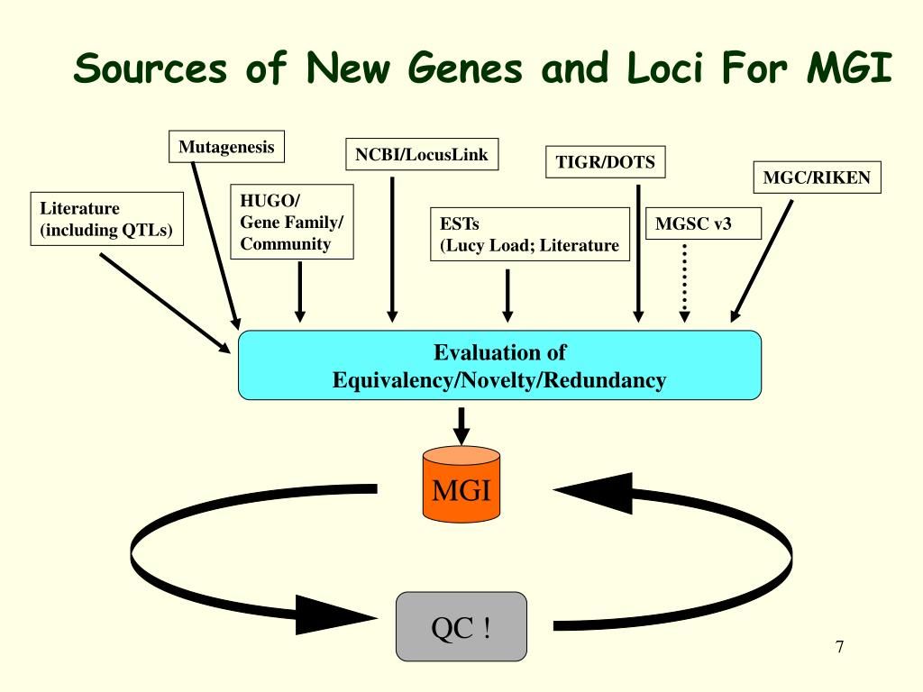 Sources of New Genes and Loci For MGI