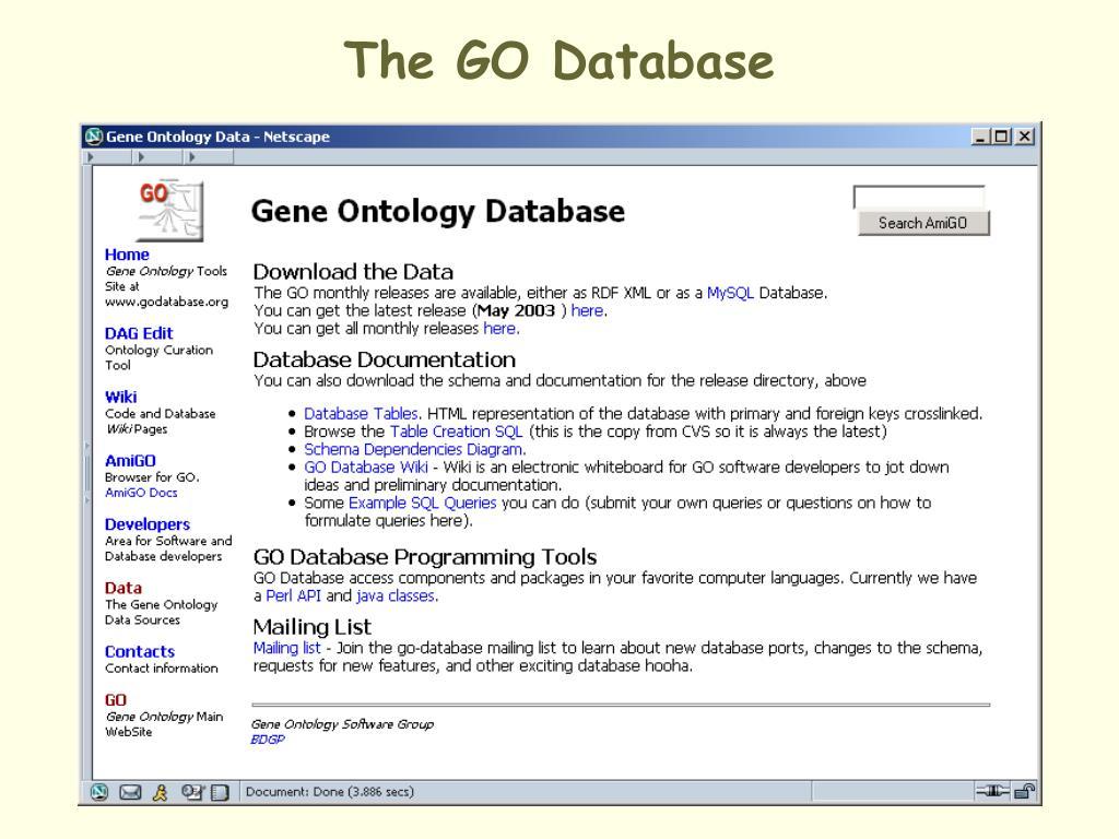 The GO Database