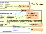 the ontology