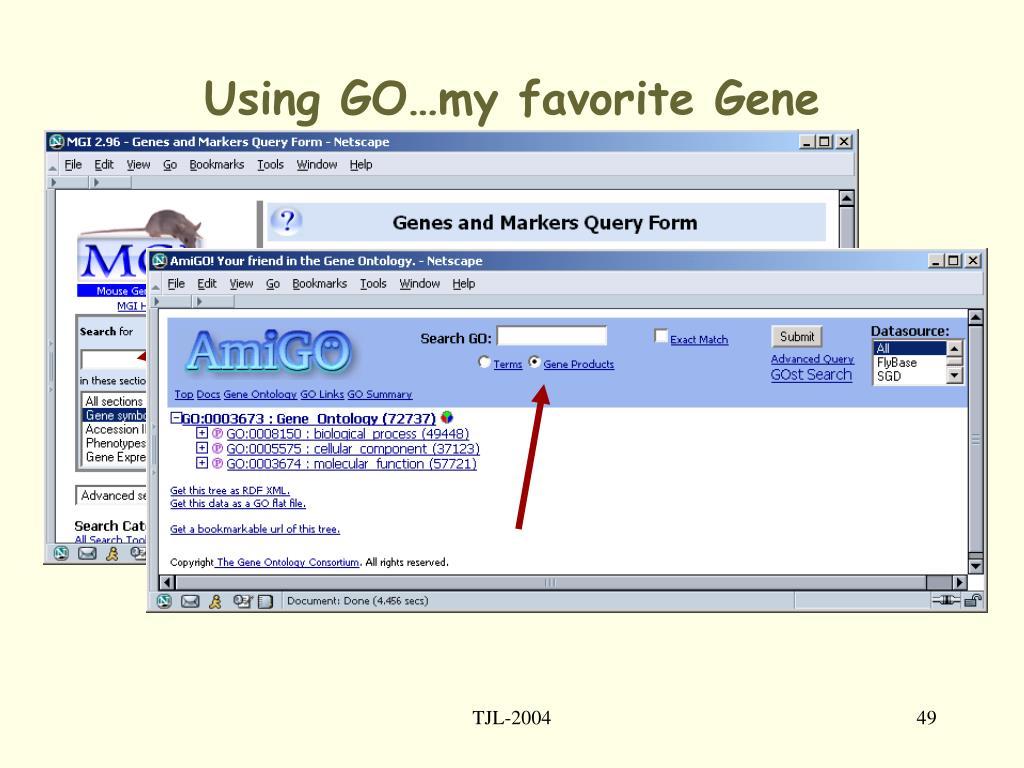 Using GO…my favorite Gene