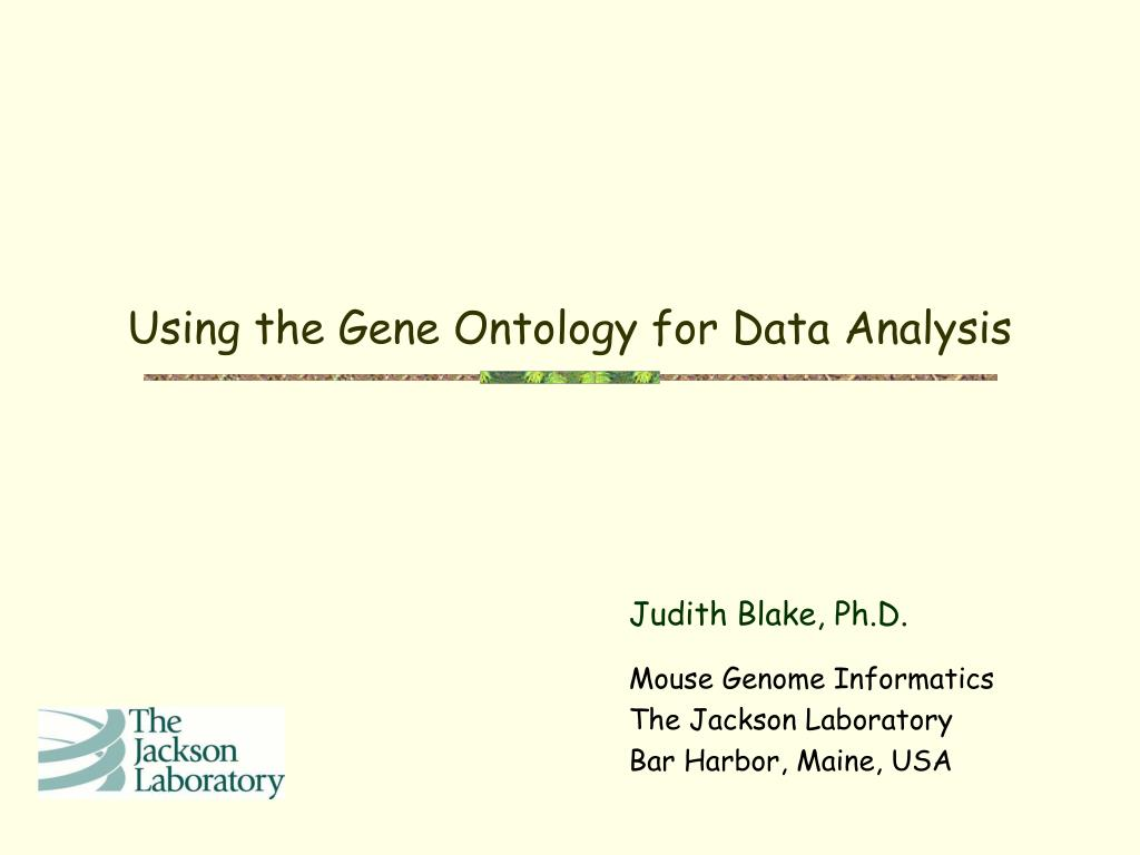 using the gene ontology for data analysis