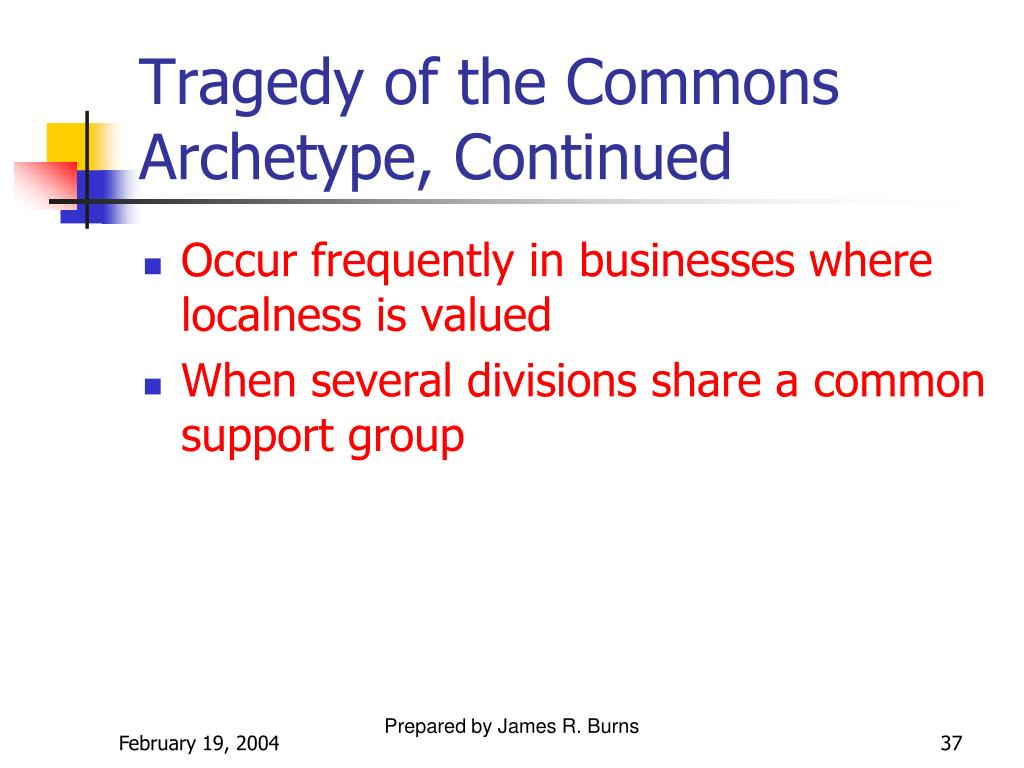 Tragedy of the Commons Archetype, Continued
