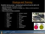 strategy and training38