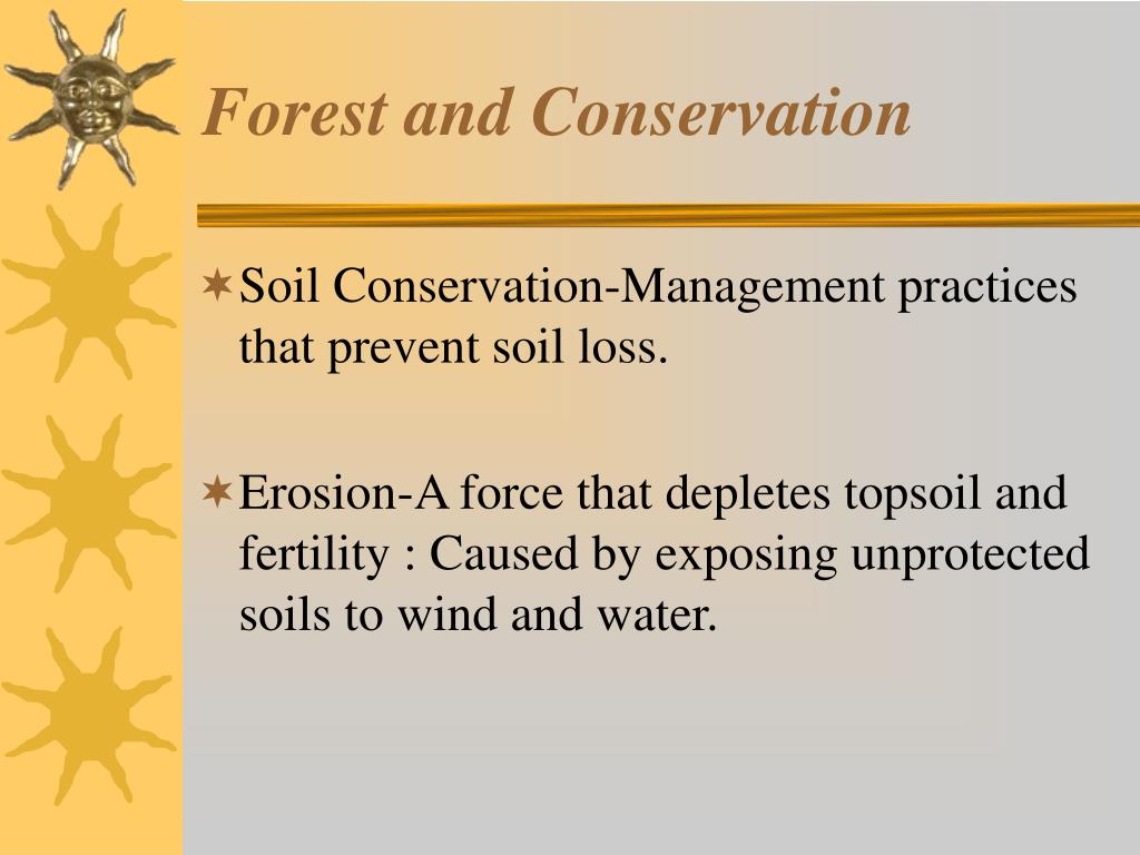 Forest and Conservation