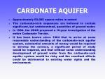 carbonate aquifer32