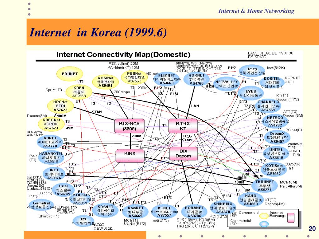 Internet  in Korea (1999.6)