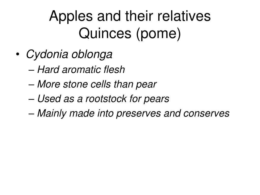 Apples and their relatives