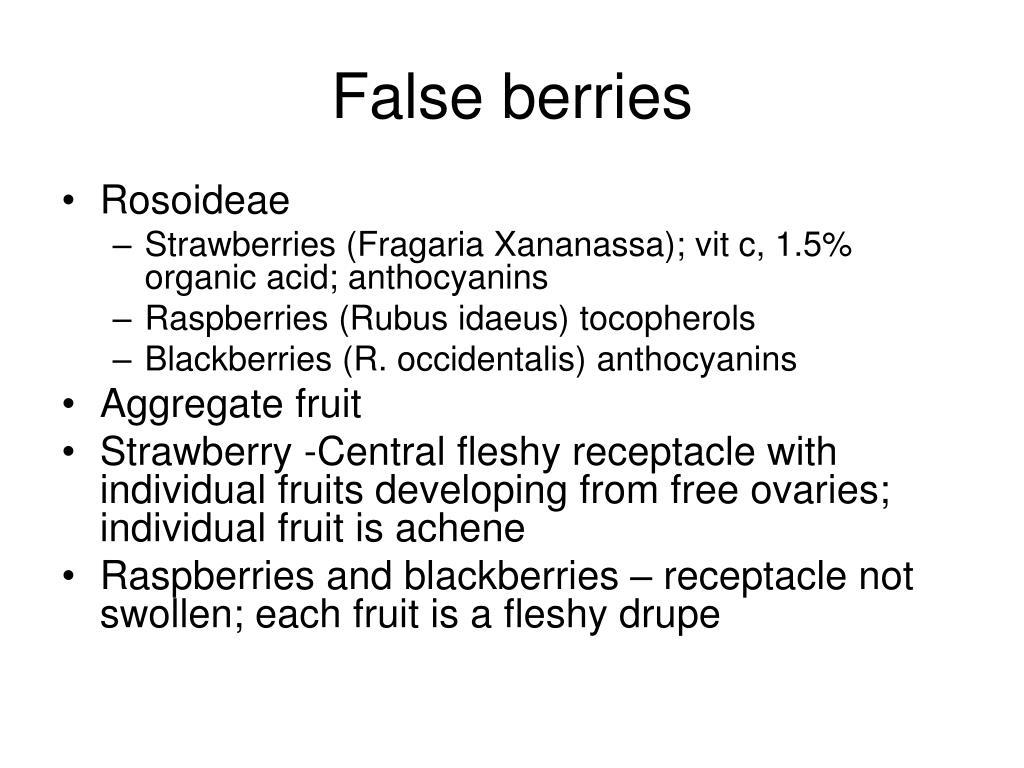 False berries