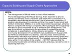 capacity building and supply chains approaches39