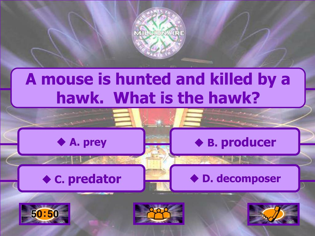 A mouse is hunted and killed by a hawk.  What is the hawk?