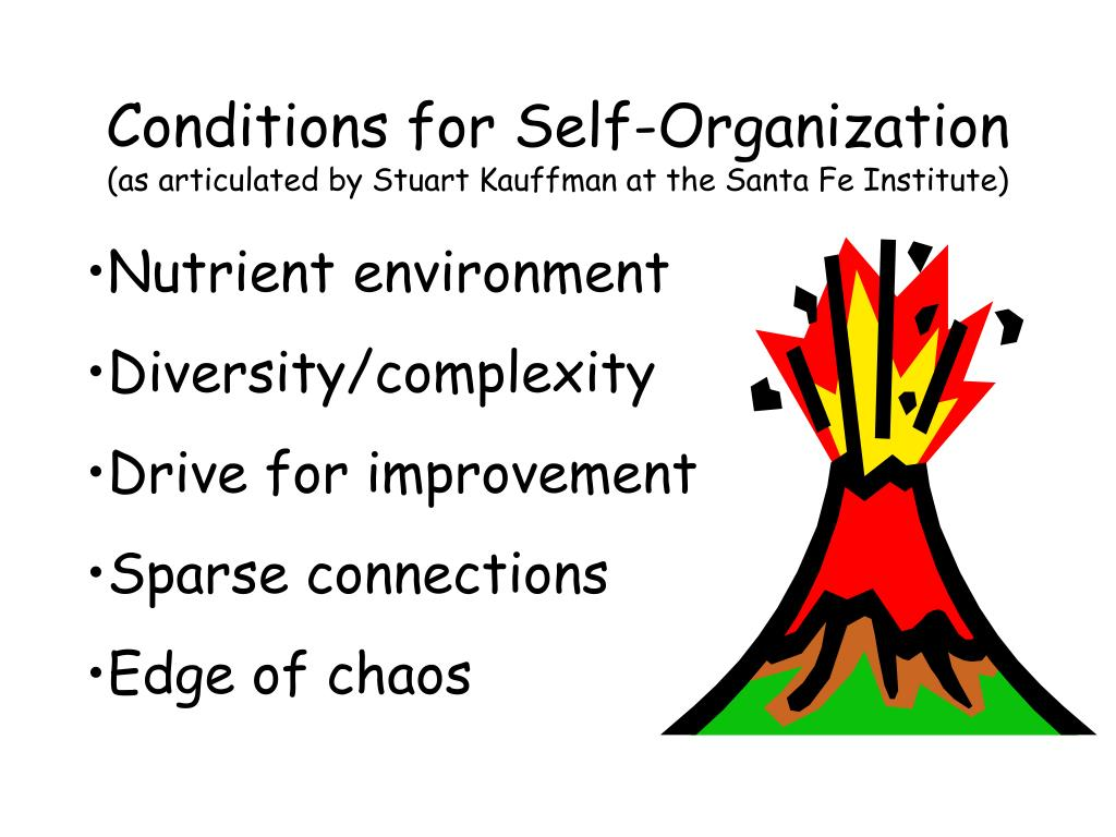 Conditions for Self-Organization